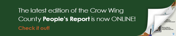 The People's Report - volume II