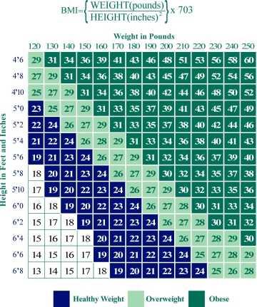 LCTA Obesity Accountability Survey
