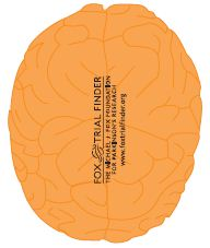 Fox Trial Finder Brains (exercise balls)