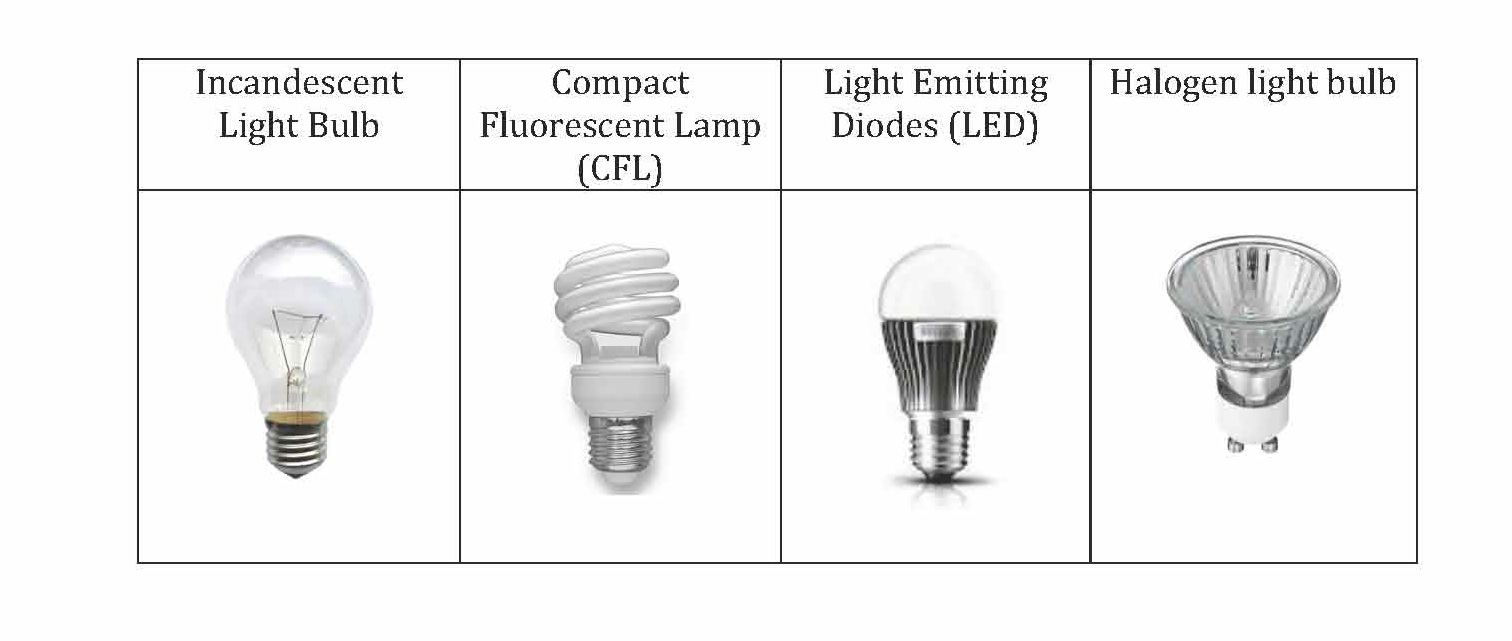 of the different types of light bulbs we will refer to in the survey