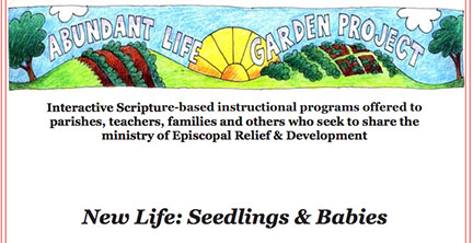 Download the New Life - Seedlings & Babies module by submitting the form below.