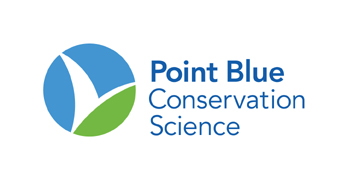 point blue standard