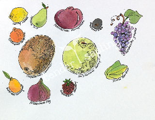 "Virtues Fruits (8.5"" x 11"", color)"