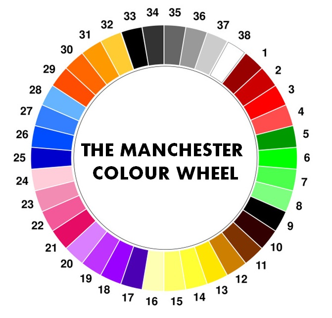 The Manchester Mass Experiment Survey: the color blue makes you feel