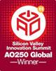 Vertice sull'innovazione della Silicon Valley - vincitore del premio AO250